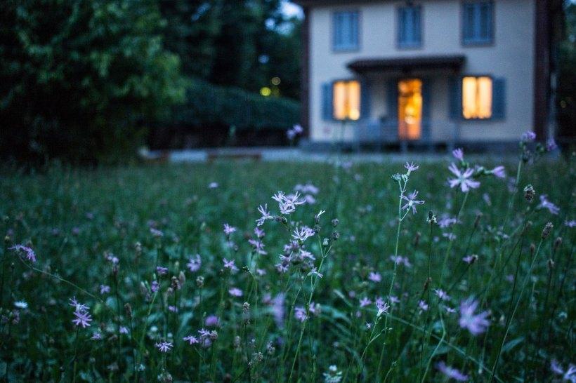 Backyard behind a house